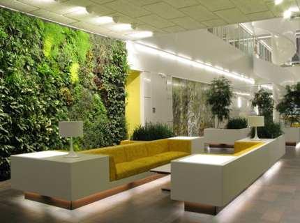 Вертикальное озеленение в квартире – приглашаем в гости на природу