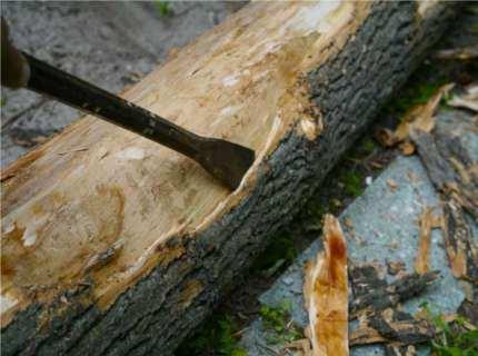 Окоренное бревно – все подробности о материале