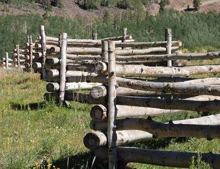 Забор из бревен – вспоминаем, как строили предки