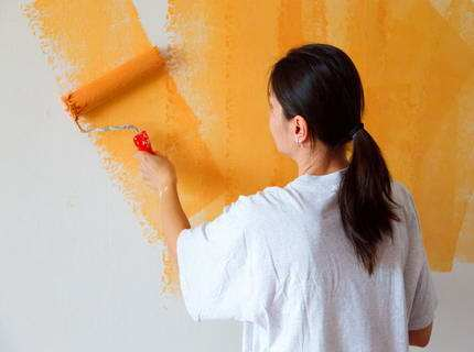 Валики для покраски – секреты успешного выбора инструмента