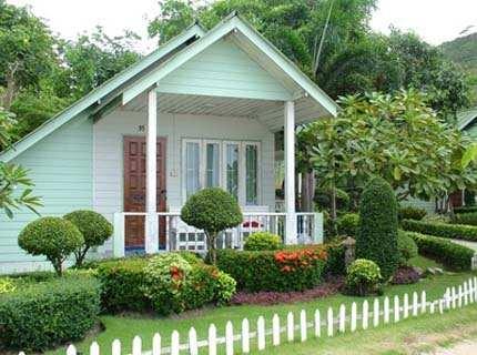 Озеленение дома – украшение или защита?